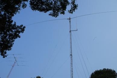 40m Dipole